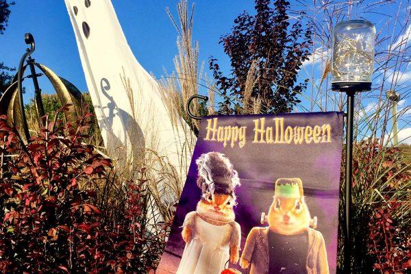 Himmel-Happy-Halloween-1