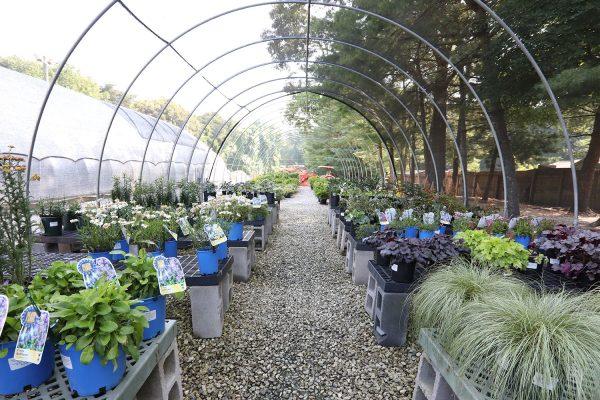 himmel_garden_center_74