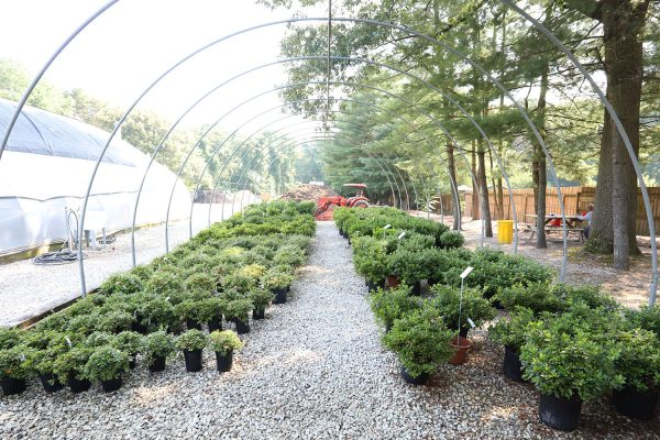 himmel_garden_center_76