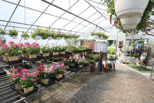 himmel_garden_center_81