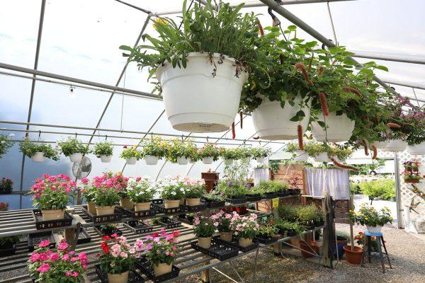 himmel_garden_center_86