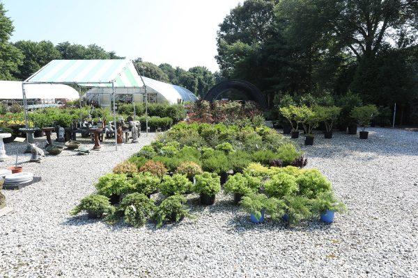 himmel_garden_center_93